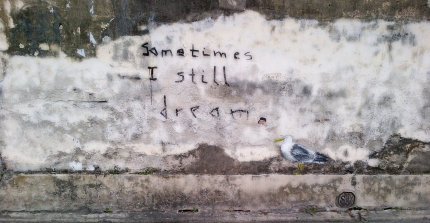 Stewart the seagull/Sometimes I still dream....street art, Penang