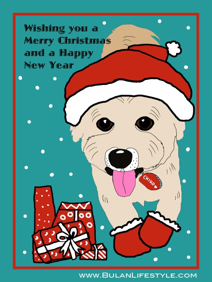 Chiko the dog Santa