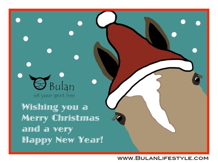 Lilo the Polo Pony Christmas Santa