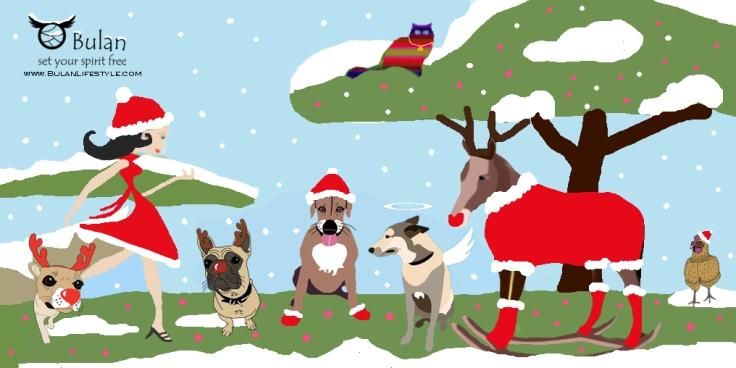 Bulan animal farm ~ Dreaming of a white Christmas