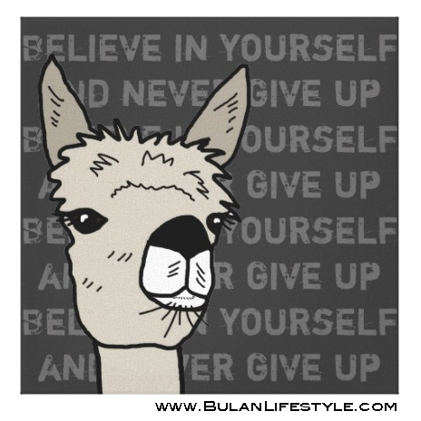 Believe in yourself and never give up