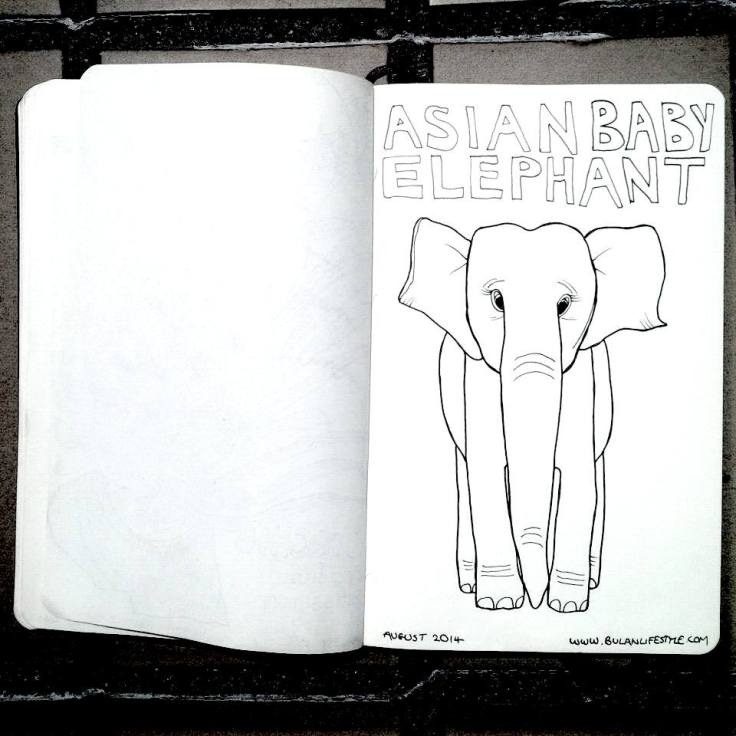 Sketch of Asian Elephant