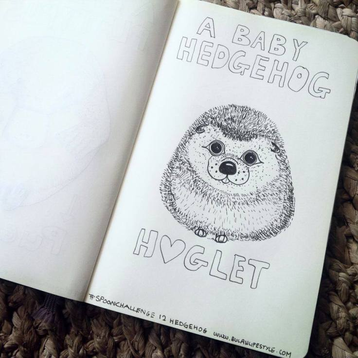 sketch of baby hedgehog