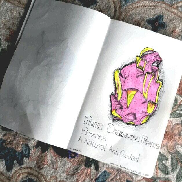 Pink dragonfruit illustration