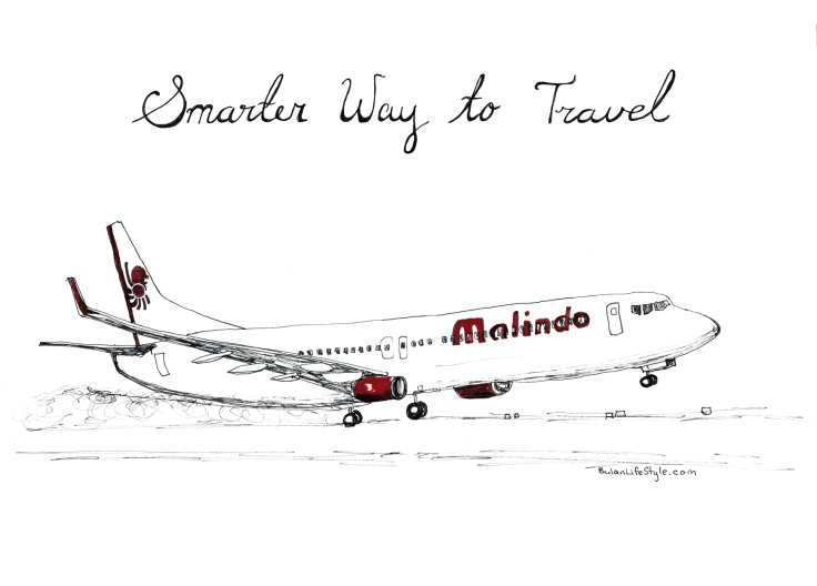 Malaindo airways drawing of plane