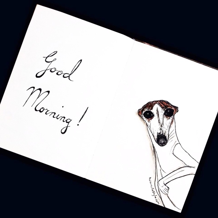 Buddy the whippet says Good Morning