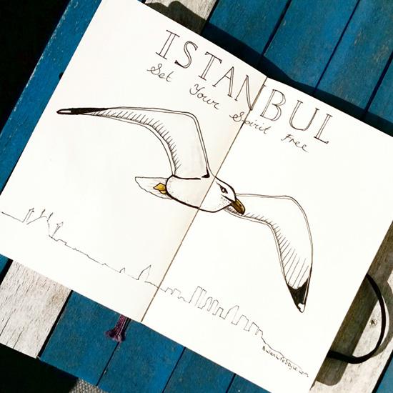 1-Seagull wpid-img_20150417_164146