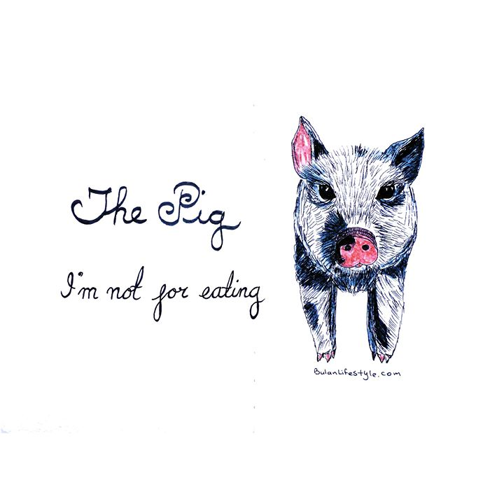 The pig: I'm not for eating!