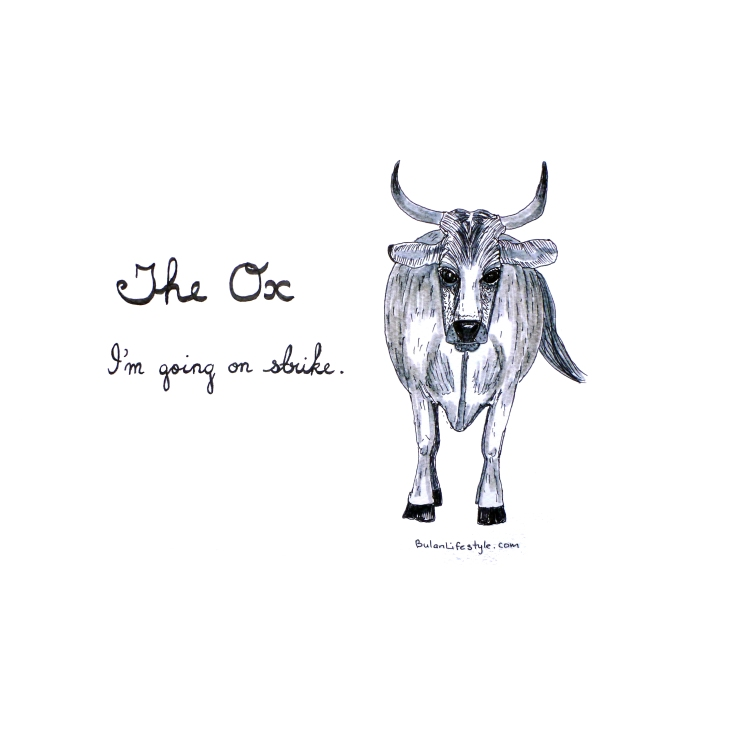 Sketch of The Ox. I'm going on strike.