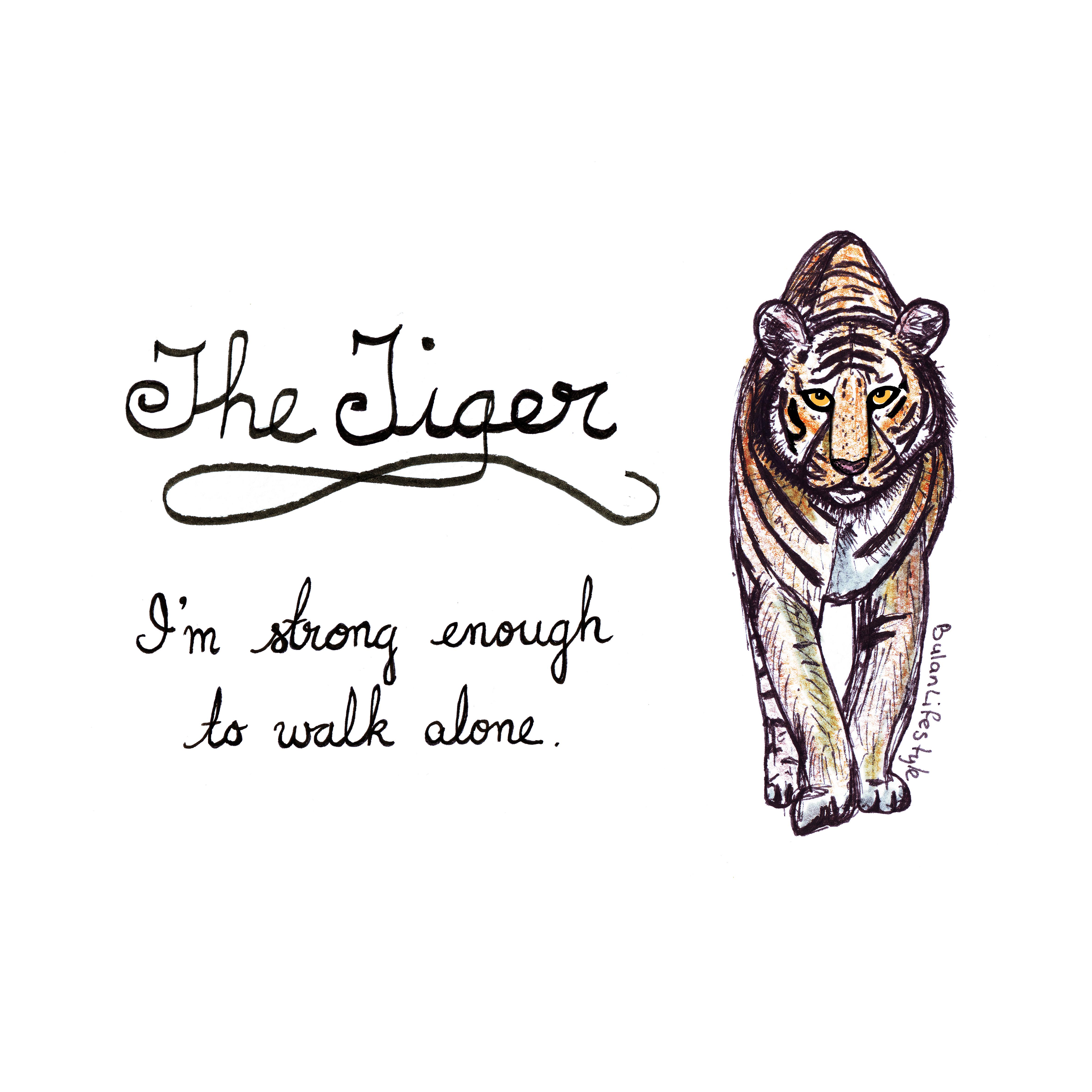 776 Tiger