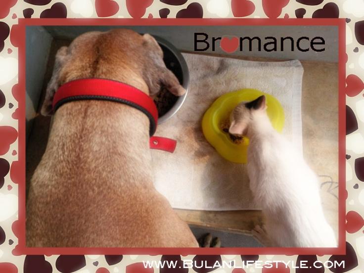 Bromance: Casper and Kobe