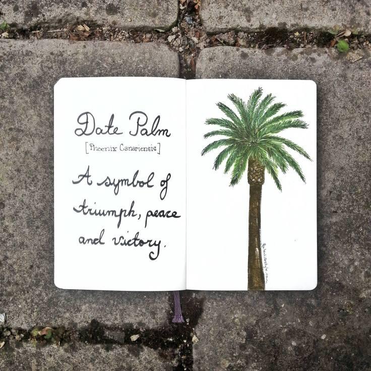 949 Date Palm