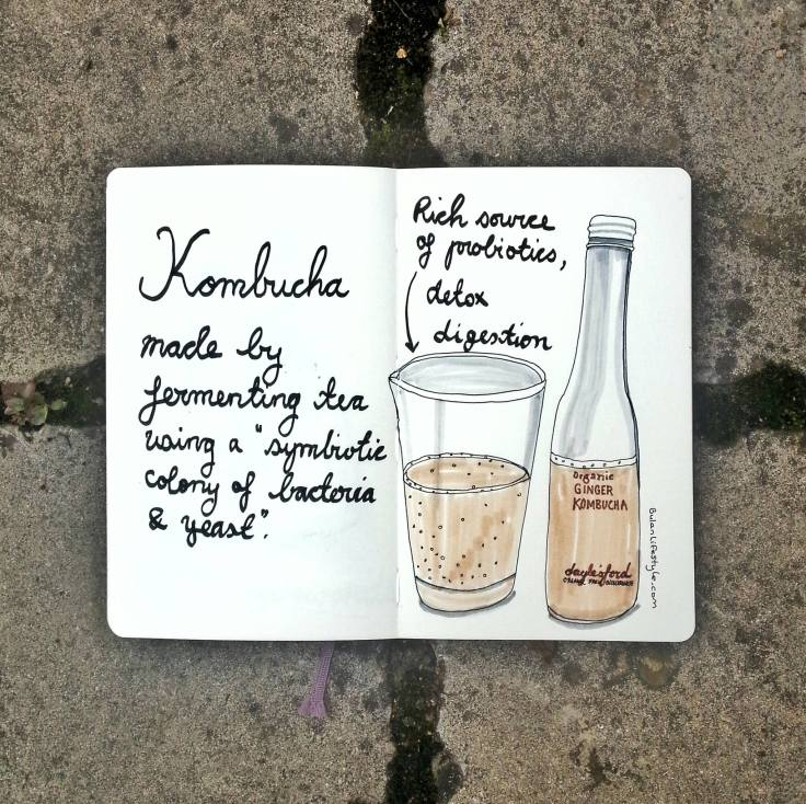 956 Kombucha