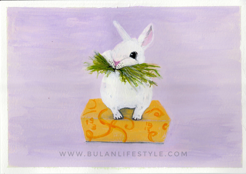 baby bunny 1-01-013425091641971404468..jpg