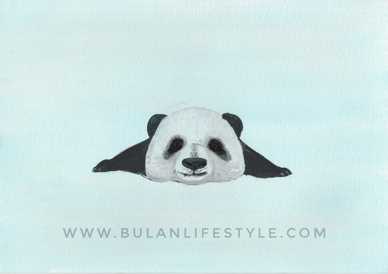 baby panda-014371335787760616293..jpg